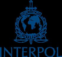 Interpol name match search